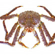 Stock Photo: King Crab