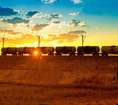 грузовой поезд мимо — Стоковое фото