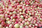 红苹果的背景,新鲜选择美味水果. — 图库照片