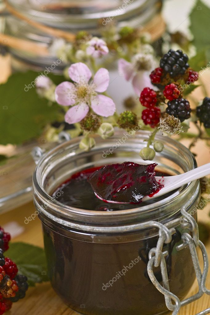 Freshly made Blackberry jelly with fresh fruits and Blackberry blossoms — Stock Photo #6446912