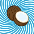 Stock Vector: Ripe coconut