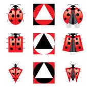 Conceptual Evolution of Ladybug — Stock Vector