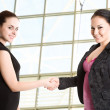 Two businesswomen shaking hands - Stock Photo