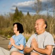 Active senior asian couple — Stock Photo