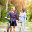 Stock Photo: Senior active asicouple