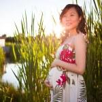 Pregnant asian woman — Stock Photo #5655497