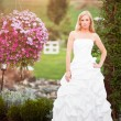 Beautiful bride — Stock Photo #5821985