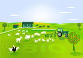 Organic farming — Stock Vector