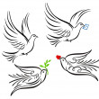 Royalty-Free Stock Vectorielle: Dove, pigeon