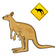 Kangaroo — Stock Vector
