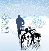 Dog sledding in the snow — Stock Vector