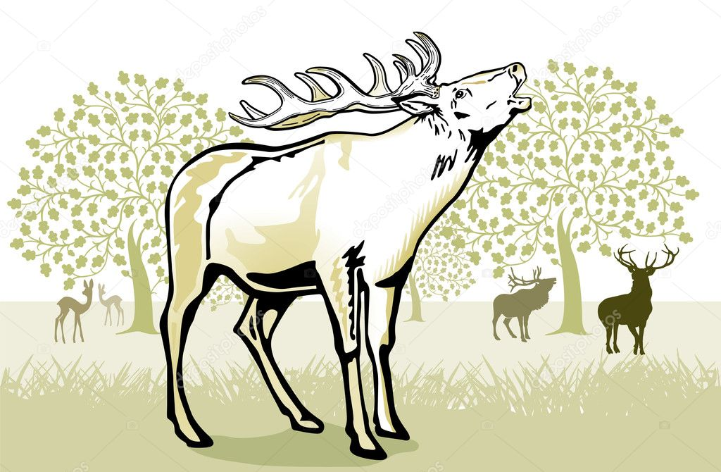 Deer in the rut — Stock Vector #6596934