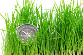 Compass in green grass — Stockfoto