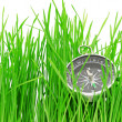 Compass in green grass - Stock Photo