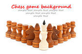 Koning van een schaakspel — Stockfoto