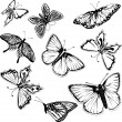 Stock Vector: Set of black and white butterflies