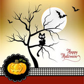 Halloween card with cat — Stock Photo