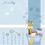 Animal baby shower — Stock Photo