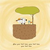 Een kleine schapen — Stockfoto