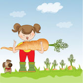 Gardener to harvest carrots — Foto Stock