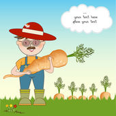 Gardener to harvest carrots  — Stock Photo