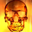 Skull in on the fire background - Stock Photo