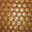 Beeswax texture without honey — Foto Stock