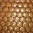 Beeswax texture without honey — 图库照片