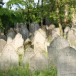 Old jewish burial place — Stock Photo
