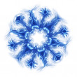 Snowflake — Stock Photo #6120772