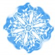 Snowflake — Stock Photo #6120774