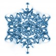 Snowflake — Stock Photo #6120776