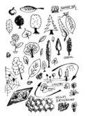 手 drwan 自然物体の小さなコレクション — ストック写真