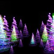 Christmas forest — Stock Photo #6259212