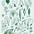 Eco  bio and nature symbols — Imagen vectorial