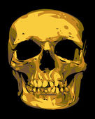 Golden human skull — Stock Vector