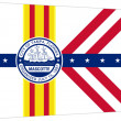 Tampcity flag — Stock Photo #5549465