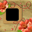 Vintage photo frames and flowers orange — Stock Photo #6073779
