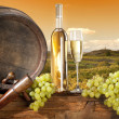 Still life with barrel and vineyard — Stockfoto