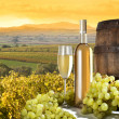 Still life with white wine and vineyard — Stock Photo