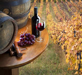 Still life with red wine on vineyard — Stock Photo