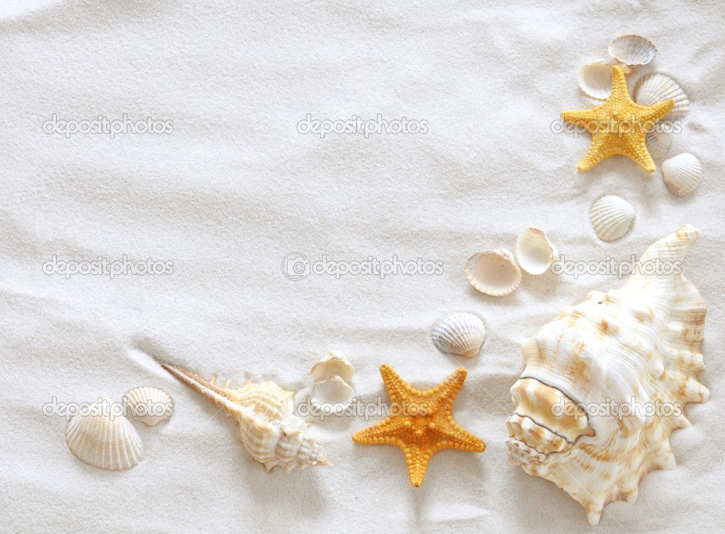 Beach with a lot of seashells and starfish — Stock Photo #5384679