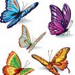 Set of butterflies — Stock Vector #5613039