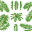 Palm leaves. Vector brush — Stockvektor