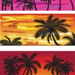 Stock Vector: Landscapes with palms at sunset