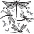 Stock Vector: Set of decorative dragonflies