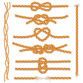 Set of ropes and knots — Stok Vektör