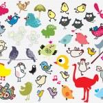 Big set of different cute birds. — Stock Vector