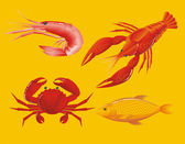 Seafood: shrimp, crawfish, crab and fish — Stock Vector