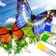 Rawing butterflies - Stock Photo